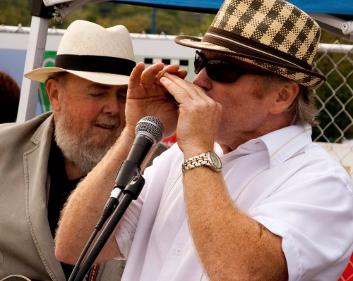 harmonica player in park with guitarist in background
